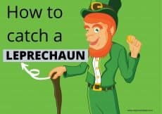 A leprechaun standing with green background. How to catch a leprechaun